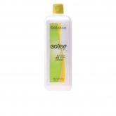Salerm Cosmetics Color Soft Developer Émulsion 1000ml