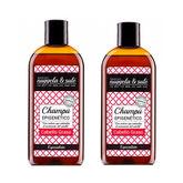 Nuggela & Sulé Epigenetico Shampoing Pour Cheveux Gras 2x250ml